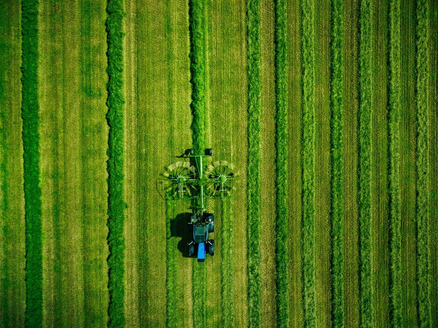Aerial view of Tractor mowing green field in Finland.